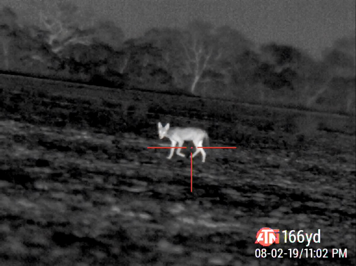 thermal-imaging-and-positive-id